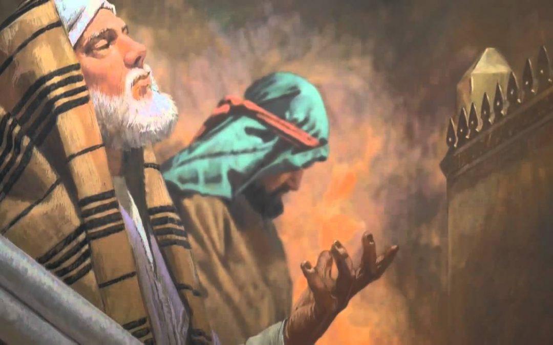 Ferisi ve Vergi Görevlisi – 1. Bölüm