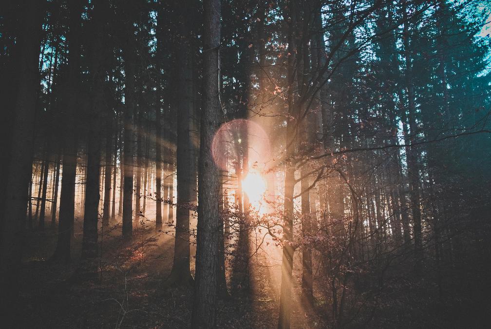 Eski Ve Yeni Yaşam – Bölüm 4