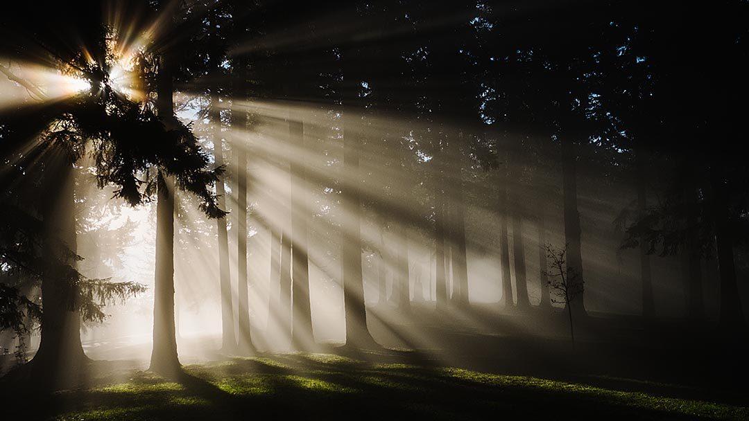 Kutsal Kitap: İnsanın Hayatını Değiştirebilecek Bir Kitaptır