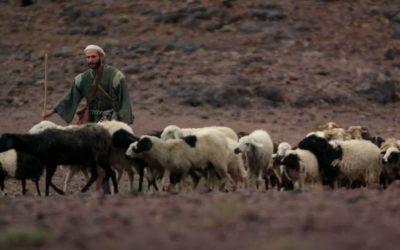 İsa İyi Çobandır | Yuhanna 10:1-15