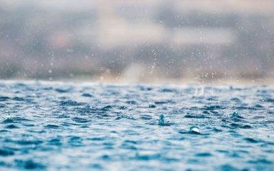 Kurtuluş Sevinci | Mezmur 51:1 -19