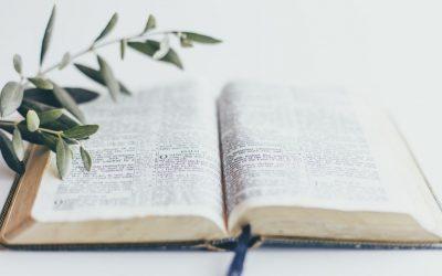 Sevgi ve Esenlik | Yuhanna 14:22-31